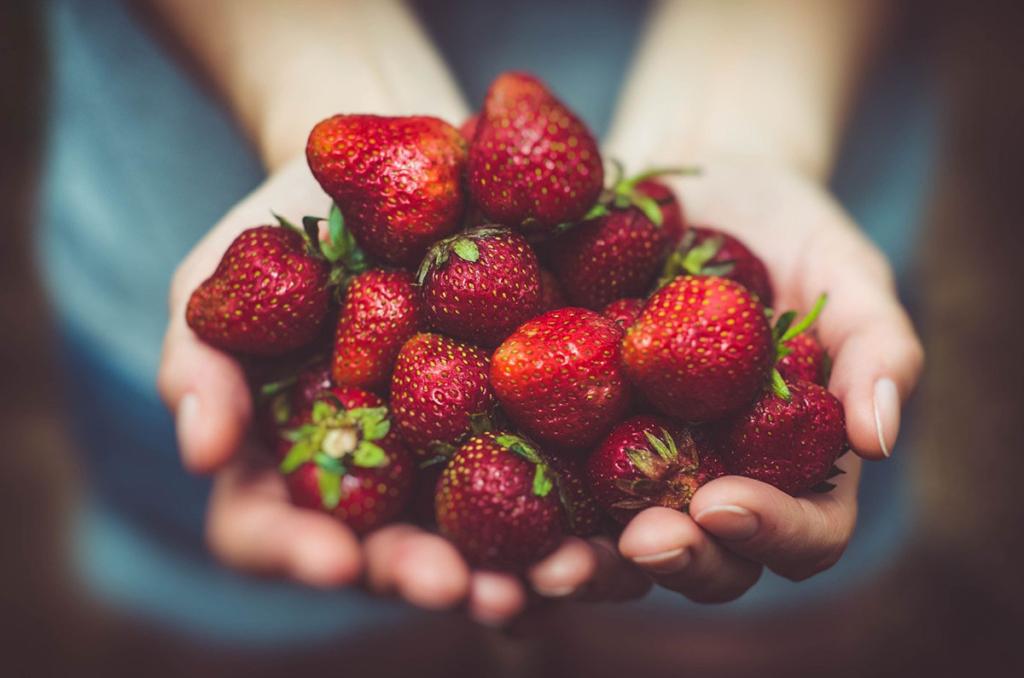 両手いっぱいの赤い苺